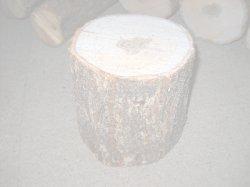 画像1: 短木栽培用原木